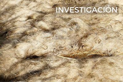 feltai-investigacion-lana