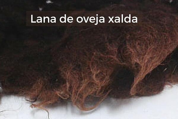 3-feltai-lana-oveja-xalda